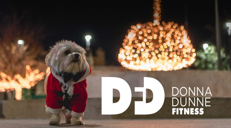 small dog sressed in a santa suit staning on a table with donna dunne fitness logo on the right
